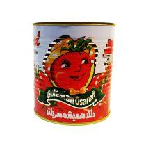 رب گوجه فرنگی دلند